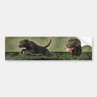 Chocolate Labrador Retriever collage bumper sticke Car Bumper Sticker