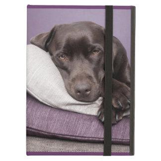 Chocolate labrador retriever dog sleepy on pillows iPad air case
