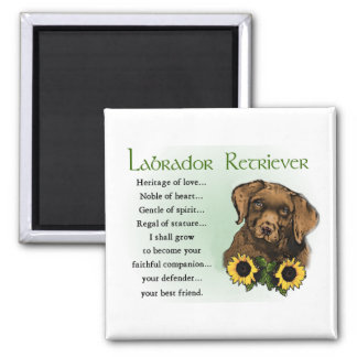 Chocolate Labrador Retriever Puppy Gifts Magnet