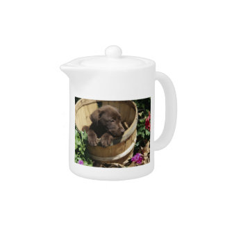 Chocolate Labrador Retriever Puppy Teapot
