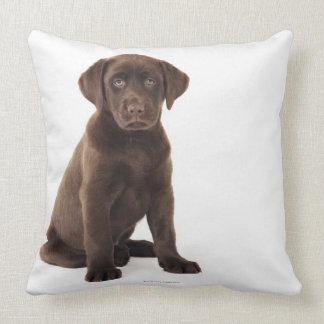 Chocolate Labrador Retriever Puppy Throw Pillow