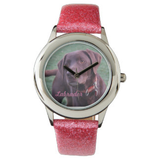 Chocolate Labrador watch