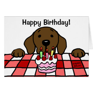 Chocolate Labrador watching you Birthday Card