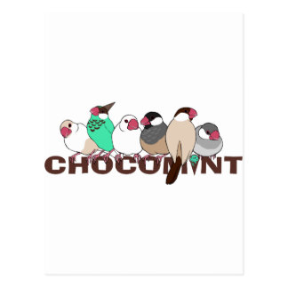 Chocolate mint java sparrow postcard