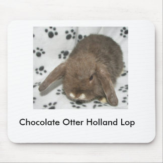Chocolate Otter Holland Lop Mouse Pad