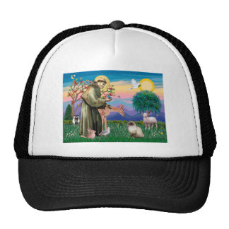Chocolate Point Himalayan Cat  - St Francis Trucker Hat