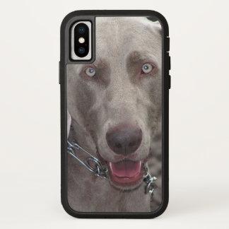 Chocolate Weimaraner Dog Photo iPhone X Case