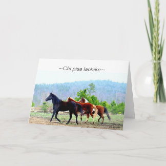 Choctaw Greeting Cards (Chi pisa lachike)