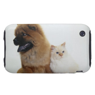 Chow Chow and a White Cat Sitting Together Tough iPhone 3 Case