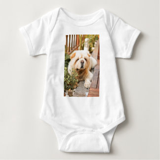 Chow Chow Dog Breed Baby Bodysuit