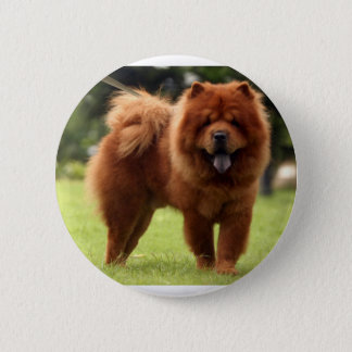 Chow Chow Dog Poses 2 Inch Round Button