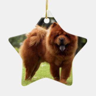 Chow Chow Dog Poses Ceramic Ornament