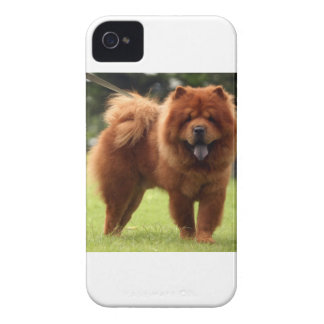 Chow Chow Dog Poses iPhone 4 Case-Mate Case