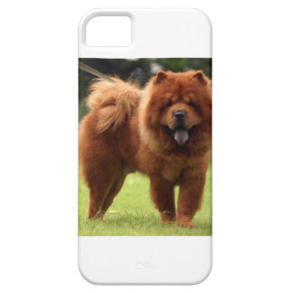 Chow Chow Dog Poses iPhone 5 Cover