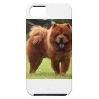 Chow Chow Dog Poses iPhone 5 Covers