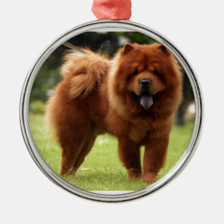 Chow Chow Dog Poses Metal Ornament