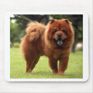 Chow Chow Dog Poses Mouse Pad