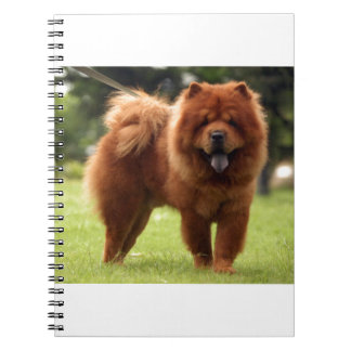 Chow Chow Dog Poses Notebook