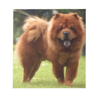 Chow Chow Dog Poses Notepad