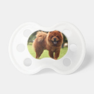 Chow Chow Dog Poses Pacifier