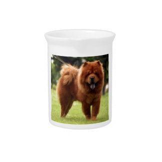 Chow Chow Dog Poses Pitcher
