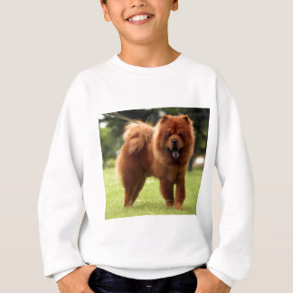 Chow Chow Dog Poses Sweatshirt