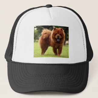 Chow Chow Dog Poses Trucker Hat