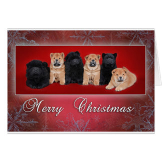 Chow-chow_kartka christmas card