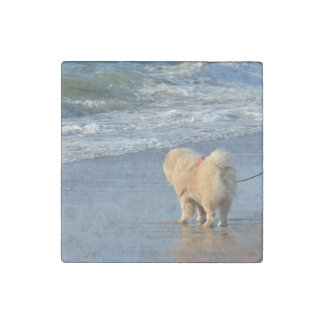 chow chow on beach stone magnets