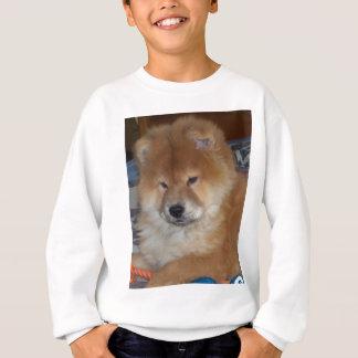 Chow Chow Pup Sweatshirt