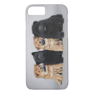 Chow-chow puppies iPhone 7 case