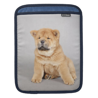 Chow chow puppies sleeve for iPads