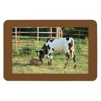 Chow Time Rectangular Photo Magnet