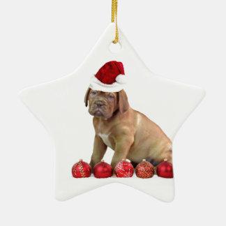 Christas Dogue de Bordeaux puppy Ceramic Star Ornament