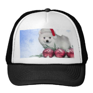 Christmas American Eskimo dog Trucker Hat