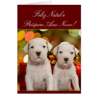 Christmas Argentine Dogo puppies card