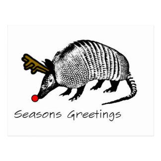 Christmas Armadillo Post Cards