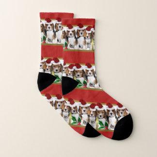 Christmas Beagle puppies dog socks 1