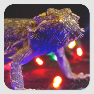 Christmas Beardie Square Sticker