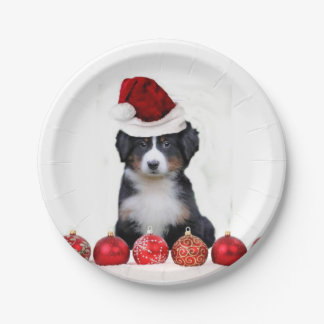 Christmas Bernese Mountain Dog Paper Plate