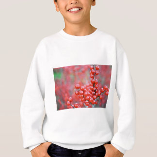 Christmas berries red sweatshirt