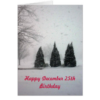 Christmas Birthday 6 - Gentle Snow Card