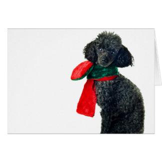 Christmas Black Toy Poodle Dog Reindeer Red Scarf Greeting Card