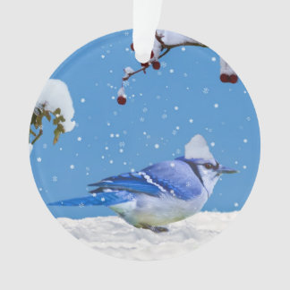 Christmas, Blue Jay Bird and Snow Ornament