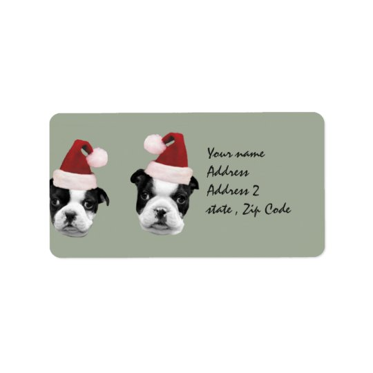 Christmas Boston Terrier puppies