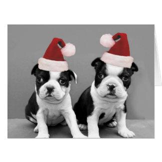 Christmas Boston Terrier puppies Big Greeting Card