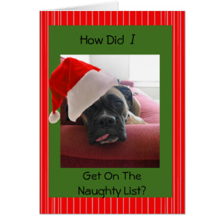 Christmas Boxer Card