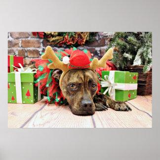 Christmas - Boxer X - Kita Print
