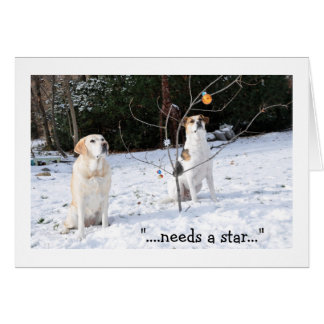 Christmas card, 2 dogs in snow looking at tree card