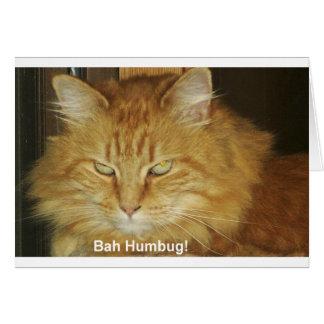 Christmas Card: Bah Humbug Card